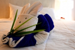 anah suites bunny