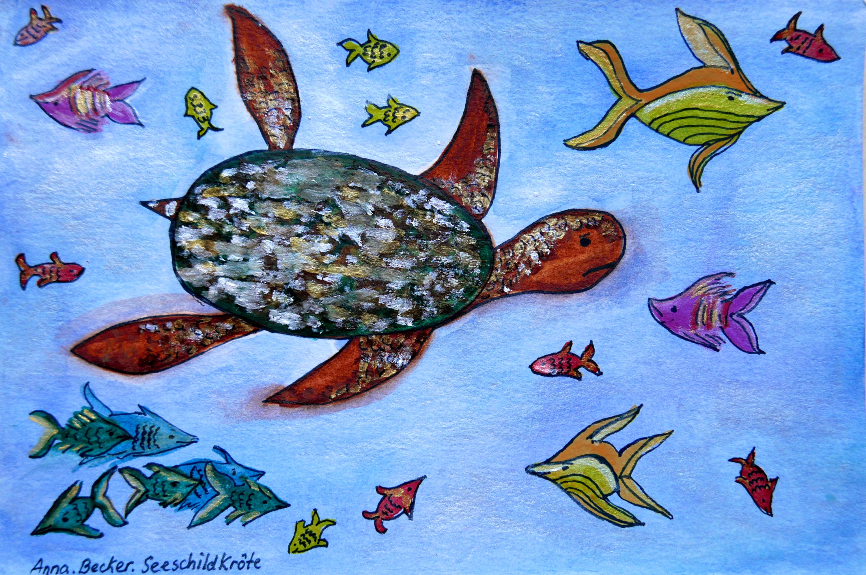 Seeschildkroete Mexico