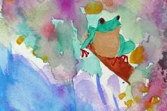 der tropische Frosch