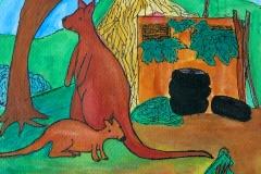kaengurus australia
