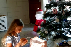 Townsville Christmas Anna
