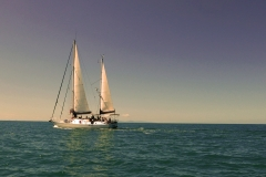 Big Mama Sailing 1