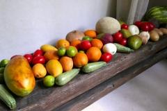 casa ambar our food storage
