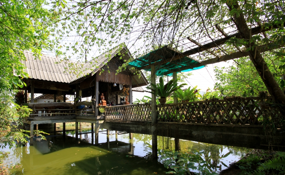 A beautiful pond under the kitchen, very peaceful and quiet place in a small village