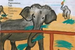 elephantstay Annas picture