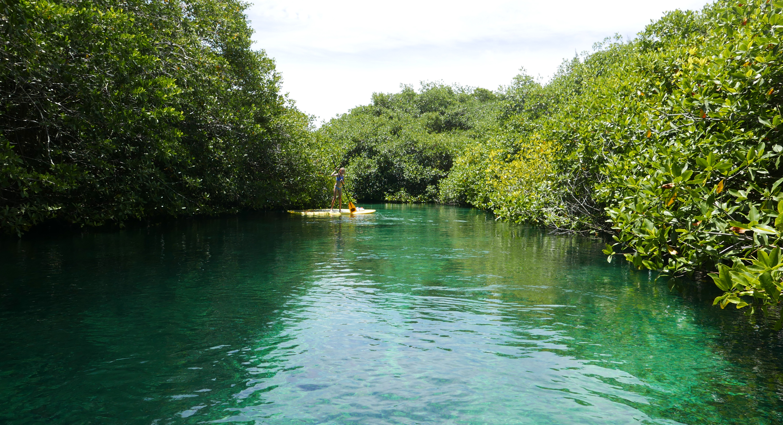 cenotes Tulum extreme control