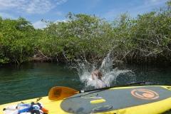 cenotes extreme control