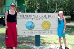 Nur auf den beiden indonesischen Inseln - Komodo und Rinca - gibt es diese Dragons.