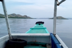 On the way to Rinca island with a local boat