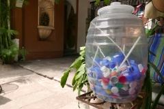 las mariposas oaxaca plastic for reuse