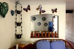 las mariposas oaxaca 5