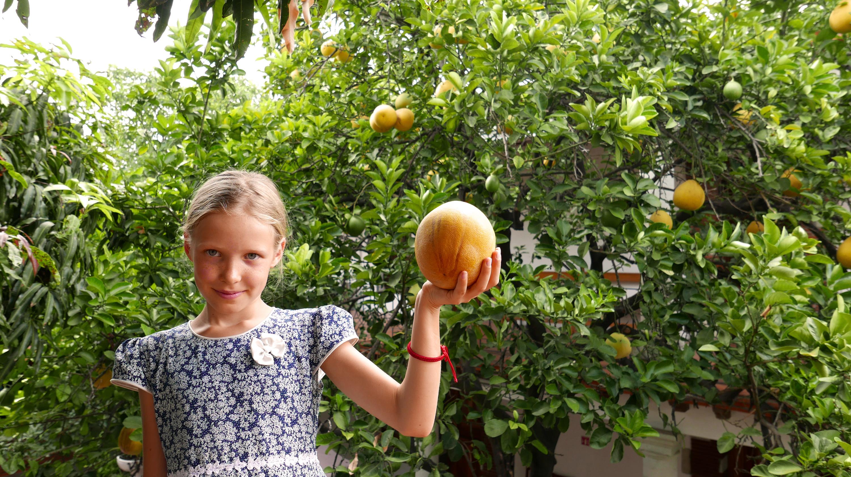 Nana Vida fruit trees