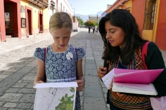 immersion spanish school oaxaca 5