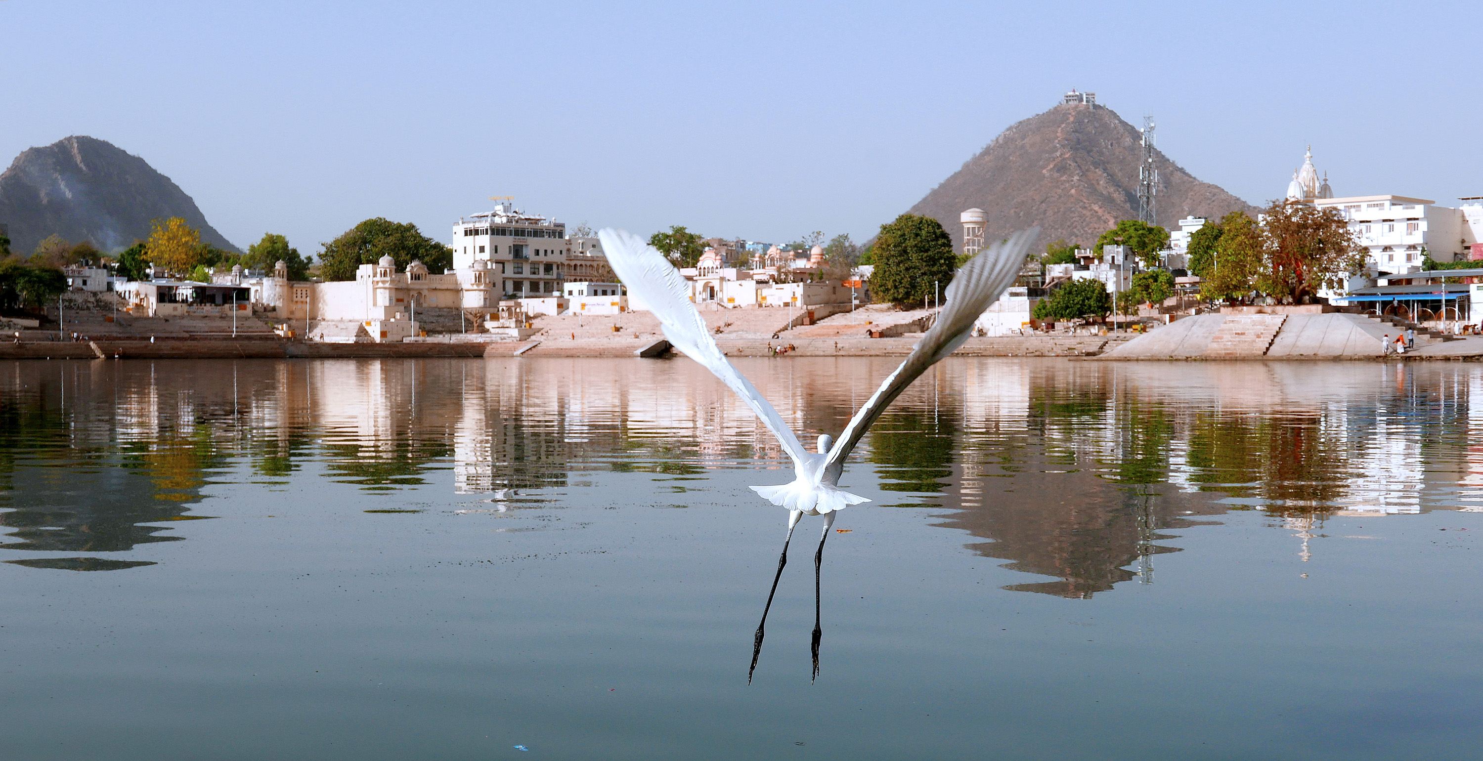Holy Pushkar Lake India Janu Private Tours