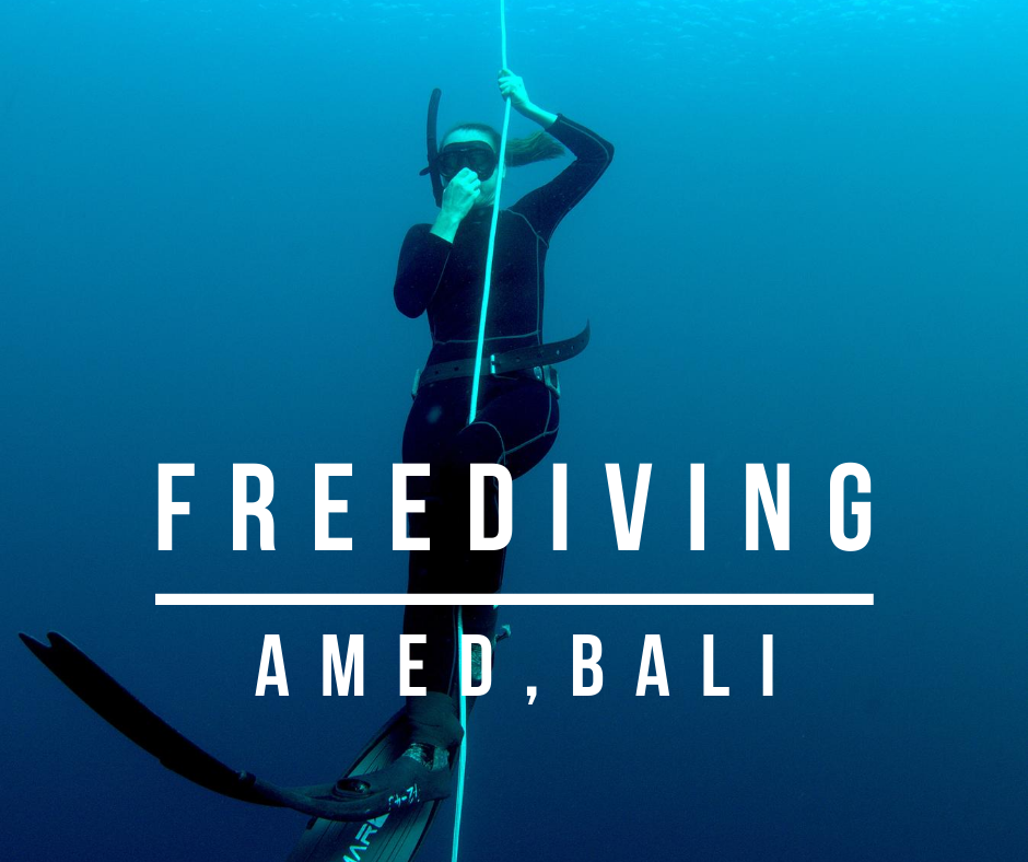 freediving bali travel films